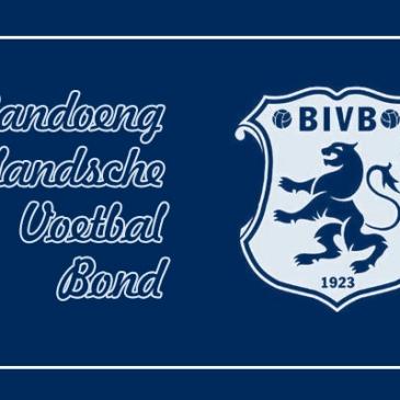logo bivb persib