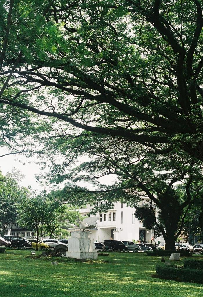 balai kota bandung yashica lynx 14e