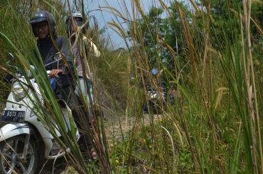 momotoran komunitas aleut ke gunung hejo