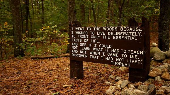 800px-thoreaus_quote_near_his_cabin_site__walden_pond-0